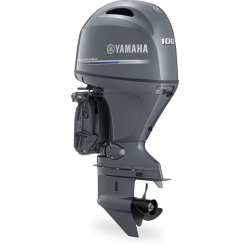 Yamaha F100 FETL